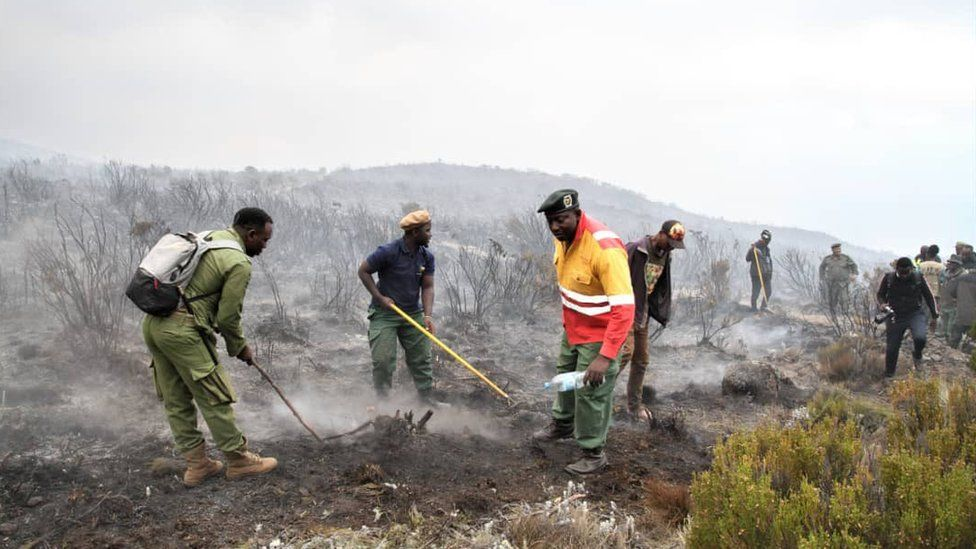 Workers on Kilimanjaro