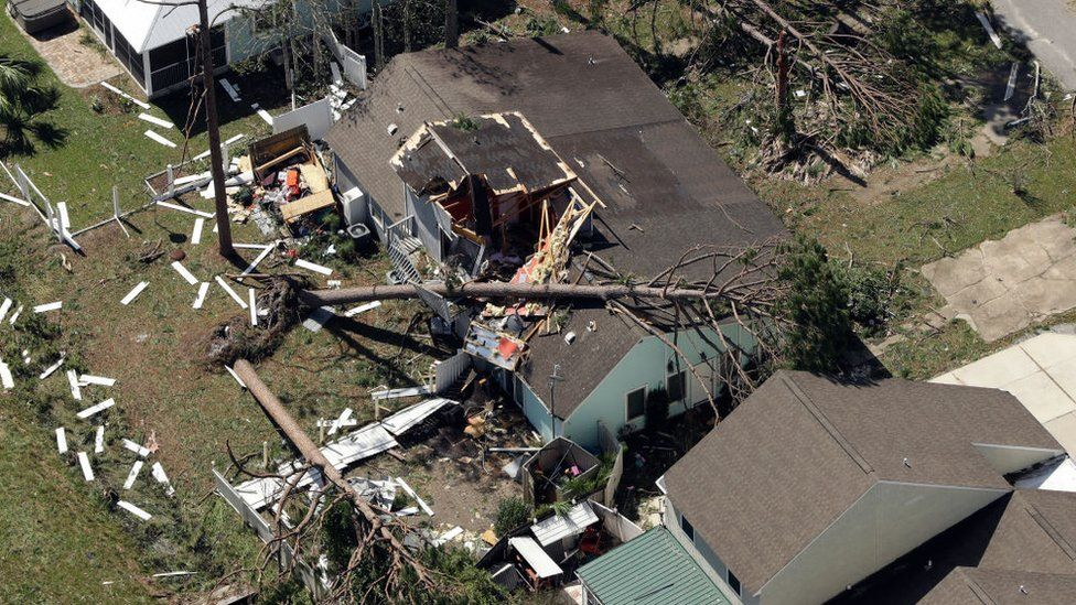 A tree on a home in Mexico Beach, Florida