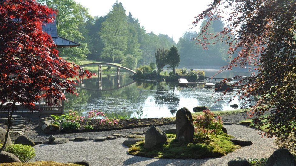 Japanese Garden Nestling In Ochil Hills Brought Back To Life Bbc News