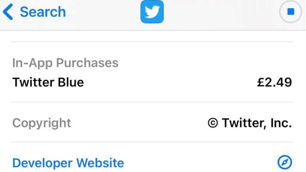 Screen grab of Twitter app listing in app store.