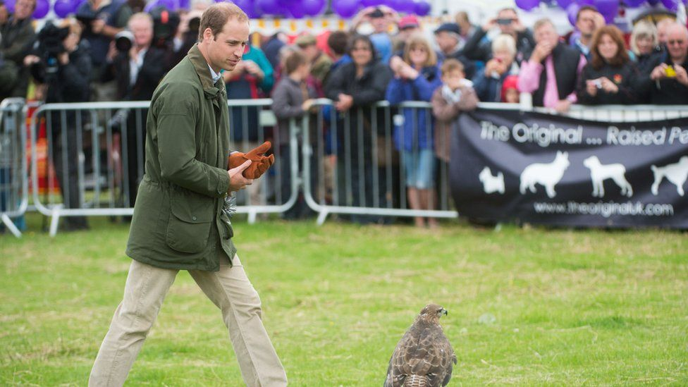 The Duke of Cambridge at the show in 2013