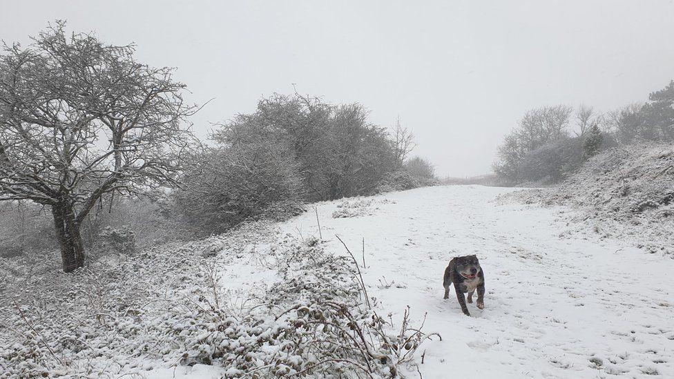 A snowy scene in Dover in Kent