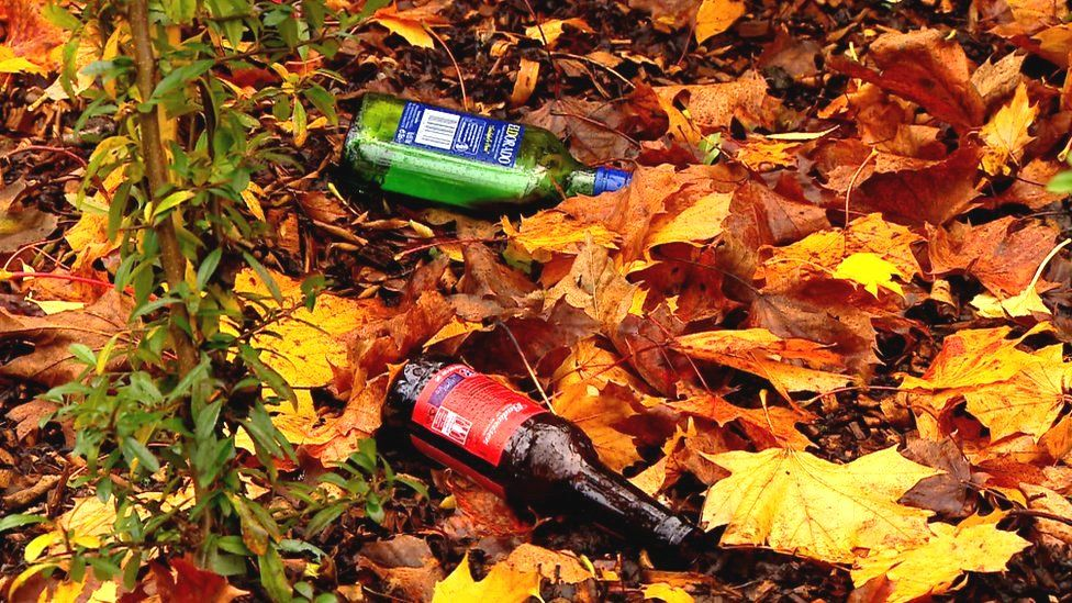 Discarded alcohol bottles