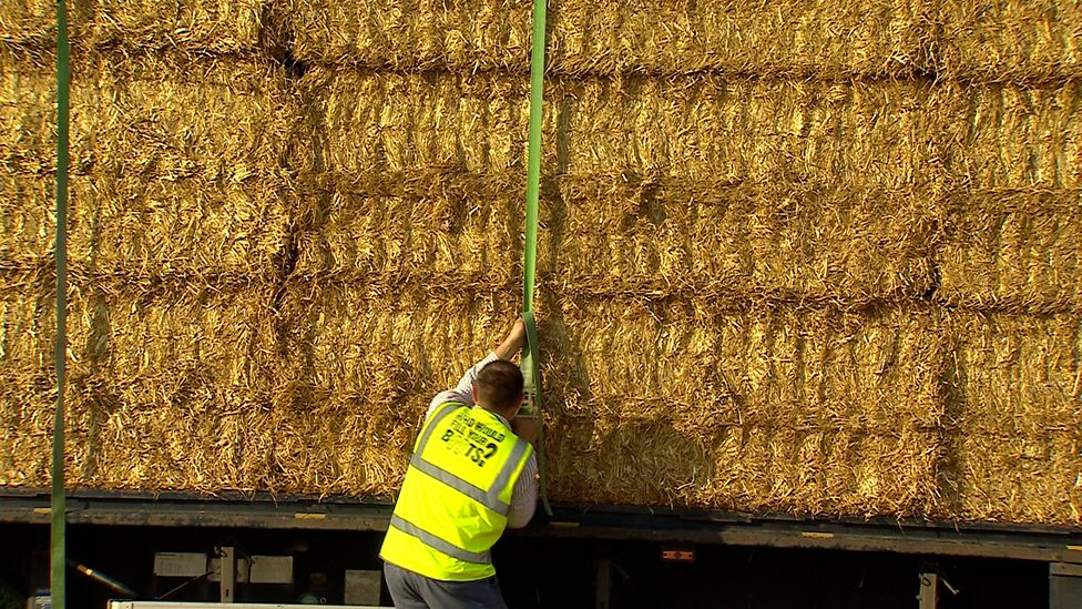 Man attaching bales to lorry