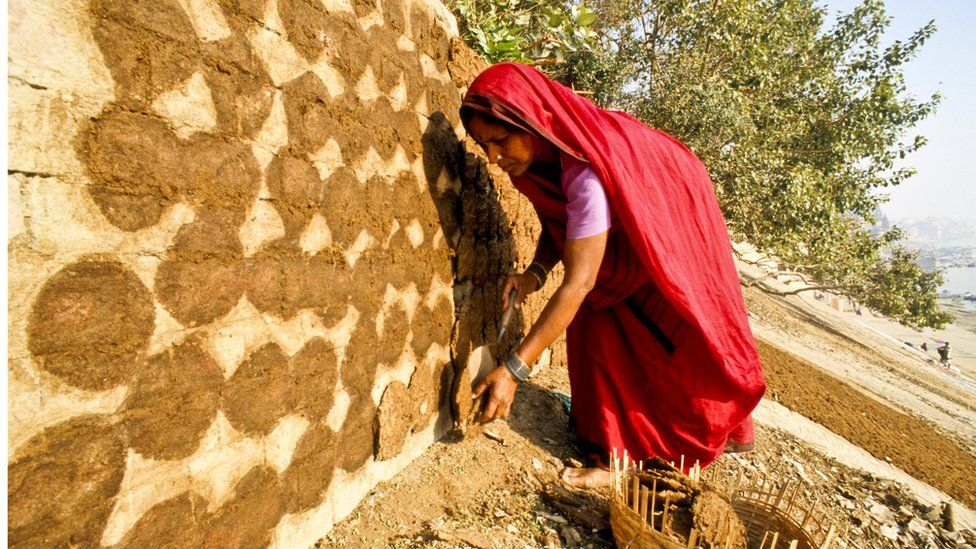 Woman making cow dung cakes
