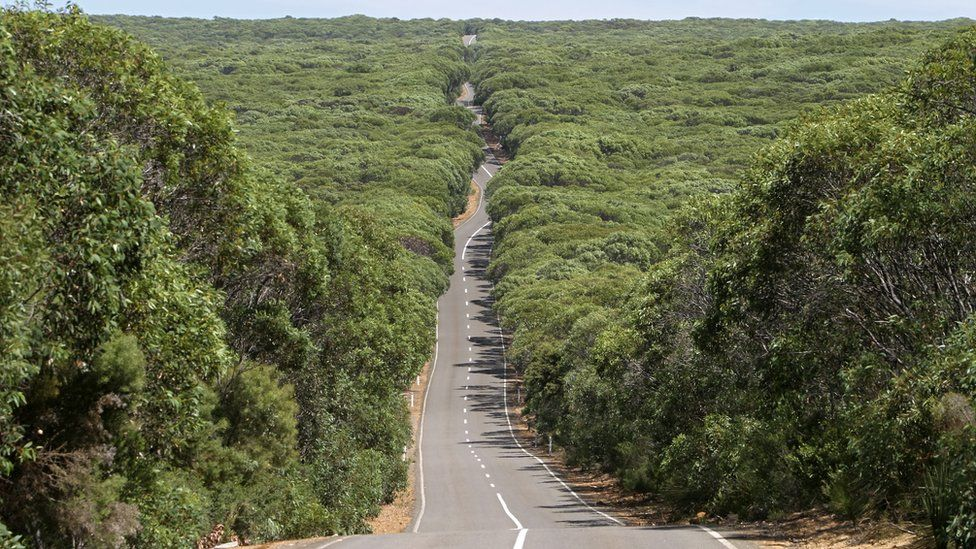 Long winding road runs through Flinders National Park on Kangaroo Island