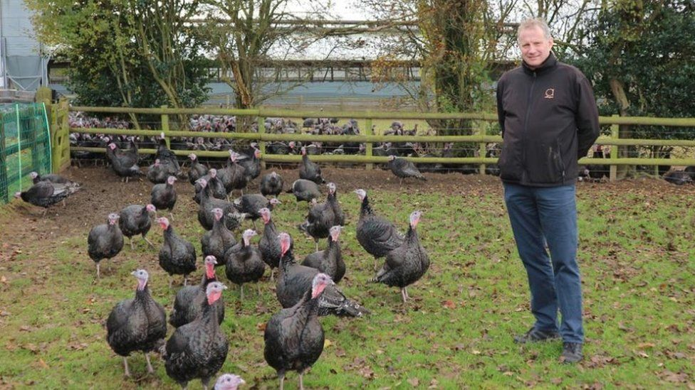 Rod Adlington at the farm in Coventry with turkeys