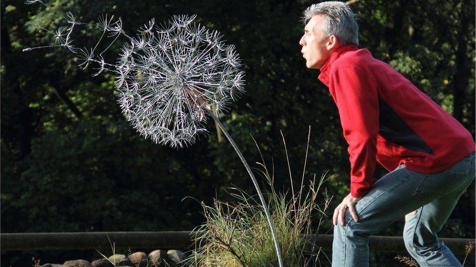 Robin and dandelion sculpture
