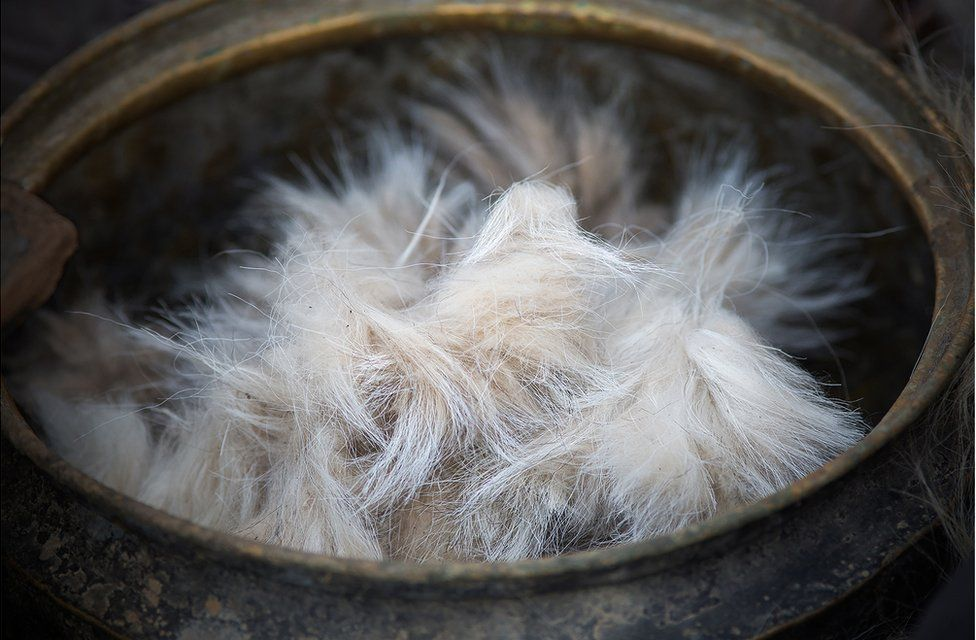 A bowl of Cashmere goat hair