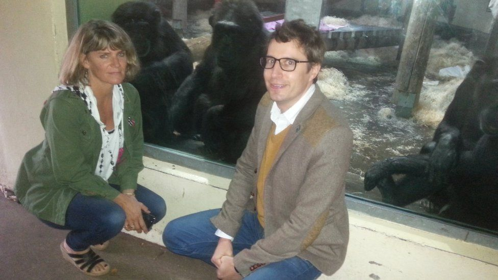 Alison Cronin and James Tilley with chimpanzees at Monkey World