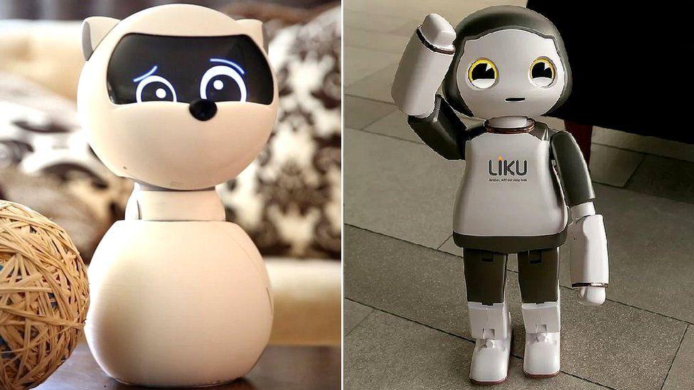 Kiki and Liku robots