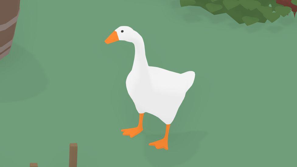 A goose