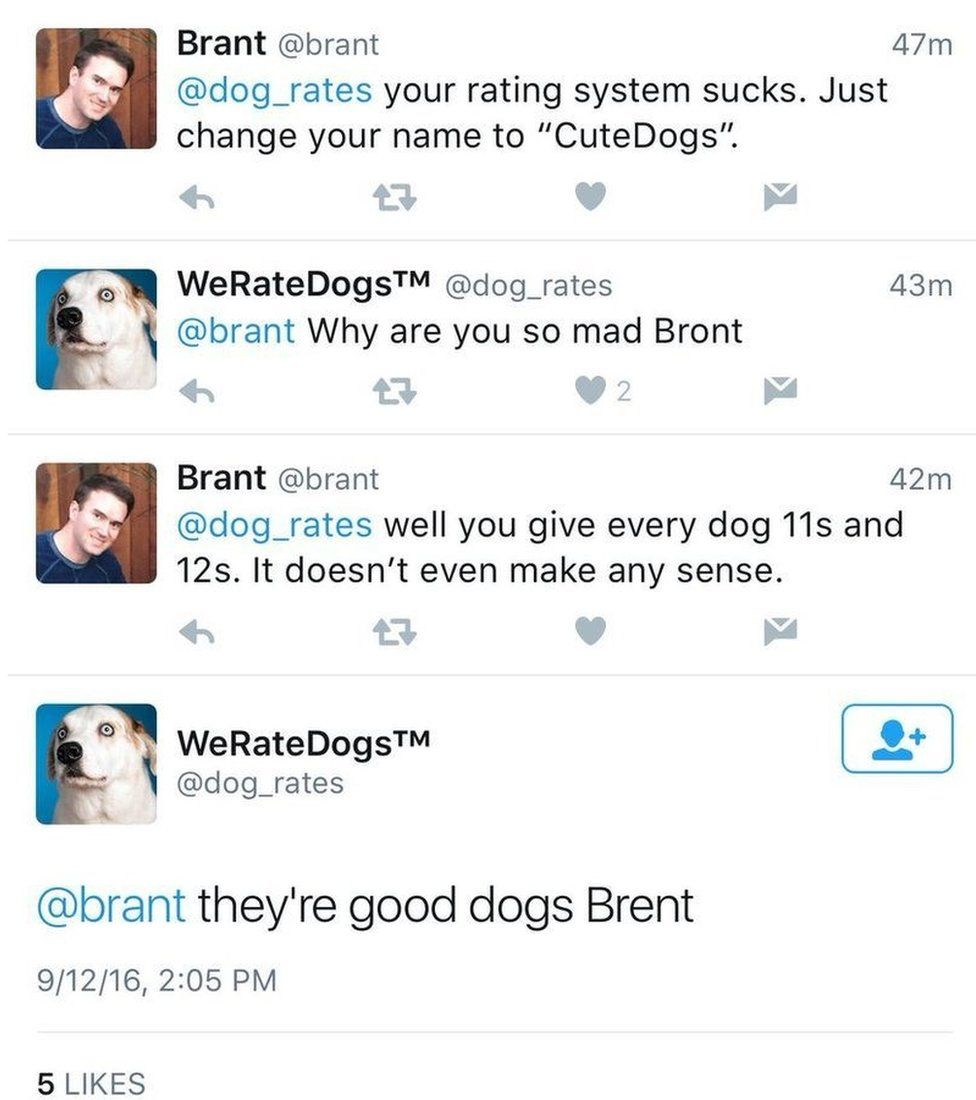 They're good dogs, Brent