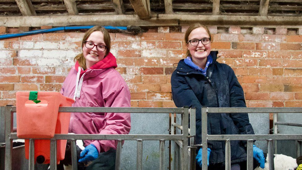 The identical twins with autism forging a career in farming