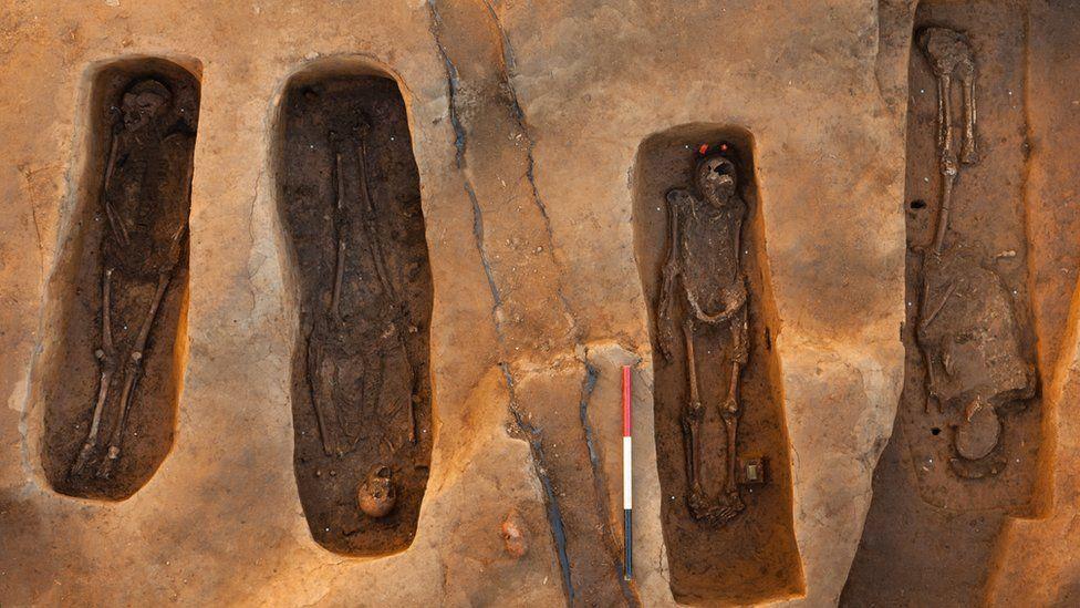 Grave excavation in 2013