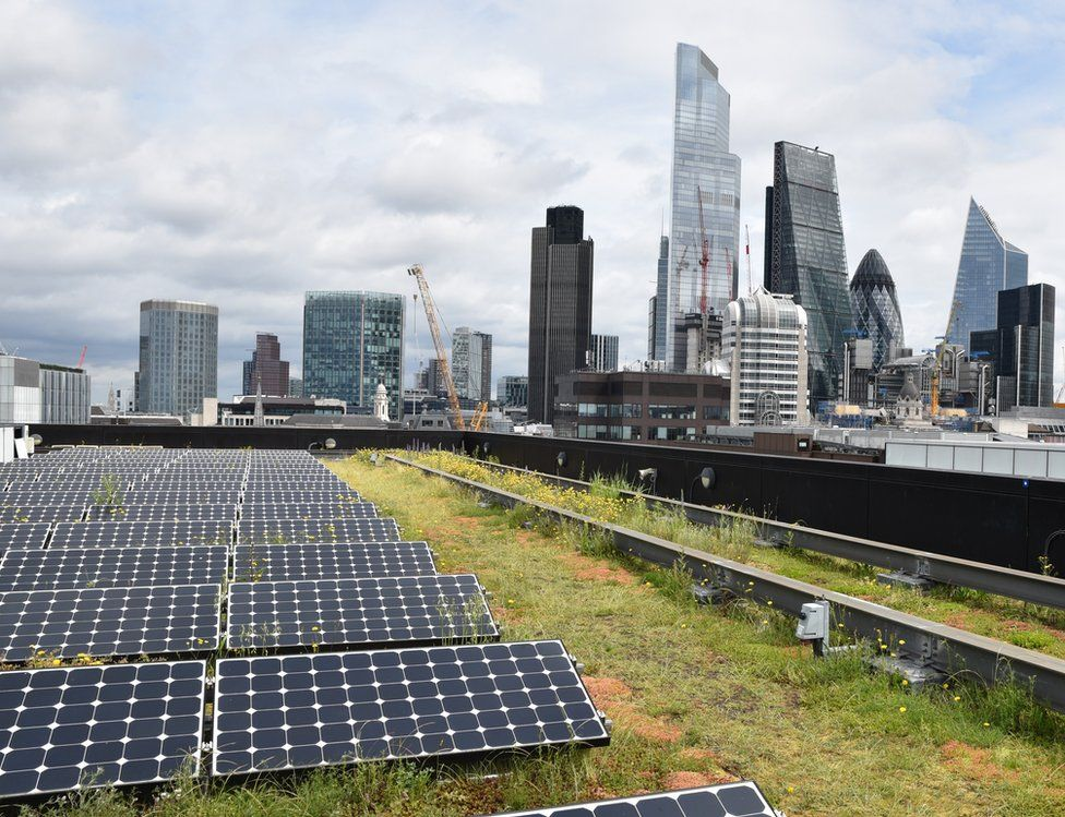 Rooftop garden in the foreground, London skyline in the background
