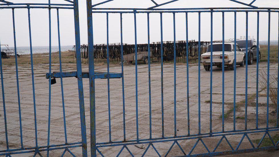 Устричная ферма, Донузлав, Крым