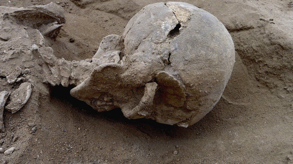 Detail of the skull of the skeleton of a man found lying prone in the sediments of a lagoon 30km west of Lake Turkana, Kenya, at a place called Nataruk