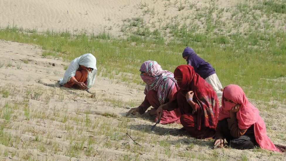 Women weed and hoe a field in Mahni