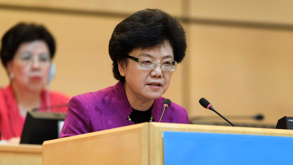 Central Committee member Li Bin addresses the world health organisation in Switzerland. She chairs China's National Health and Family Planning Commission.