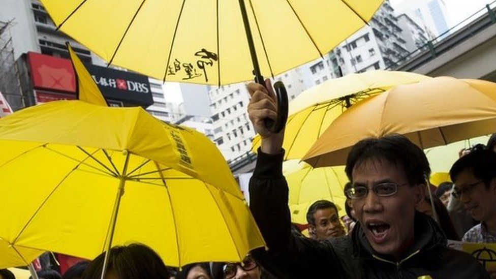 A pro-democracy protester during the march to demand universal suffrage (01 February 2015)