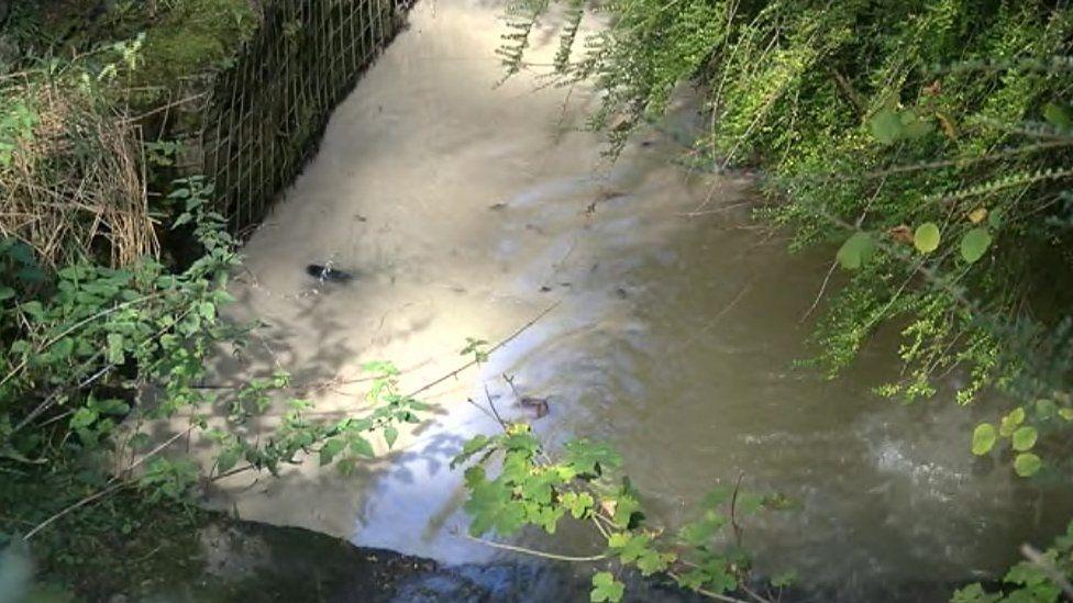 Afon Pibwr