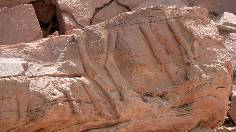 Legs of camels carved into rock faces in Saudi Arabia