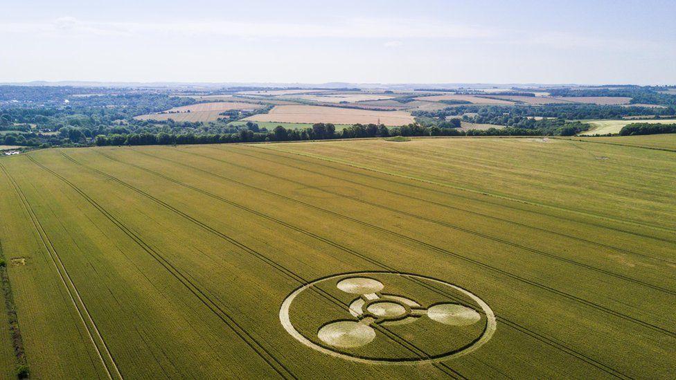 Chemical weapon symbol crop circle