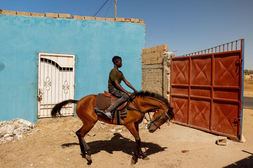 Fallou Diop rides a young mare, called Raissa Betty, out of the Lambafar stable, in Niaga, Senegal, 27 January 2021