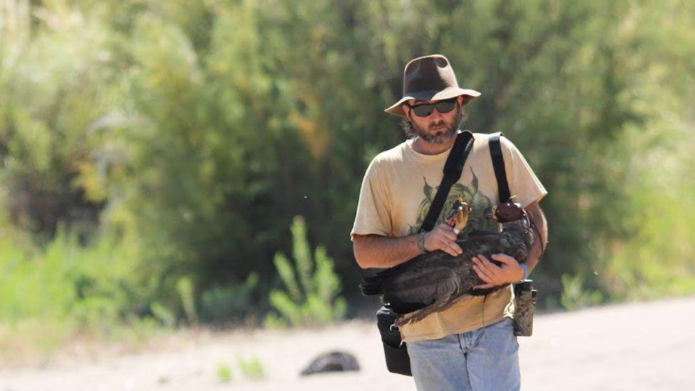 O cientista que percorre milhares de quilômetros para salvar uma das águias mais misteriosas da América do Sul