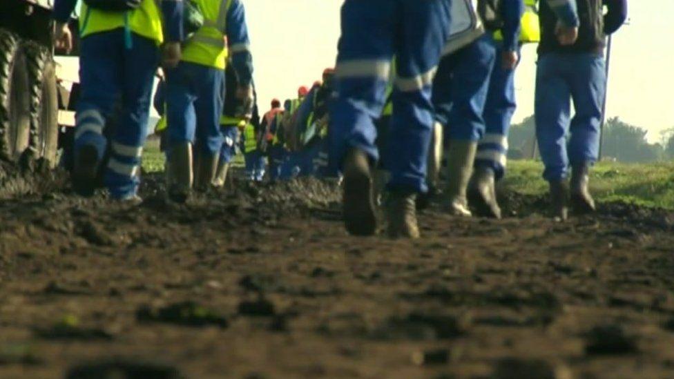 Migrants working on a farm