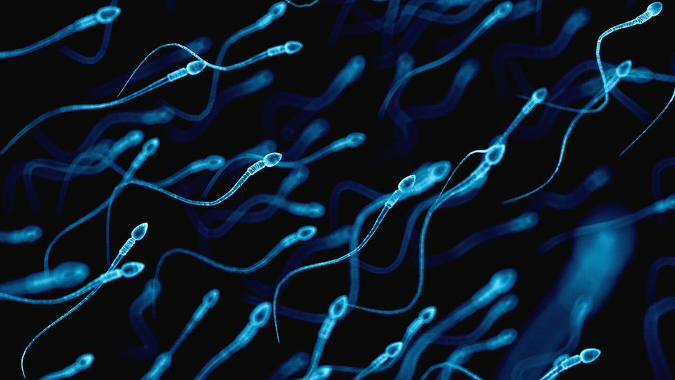 A graphic of sperm