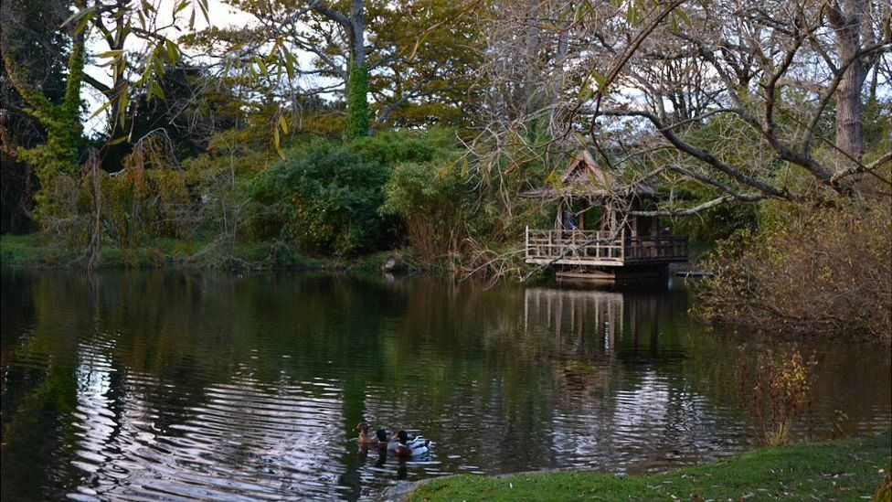 Saumarez Park pond and hut