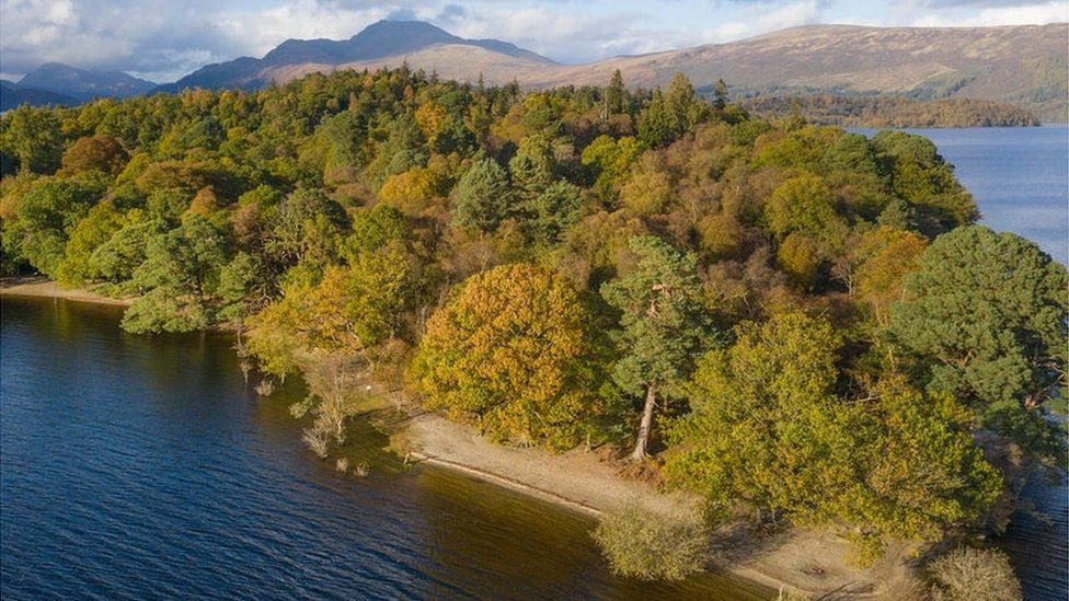 Uninhabited Loch Lomond Wallaby Island Up For Sale Bbc News