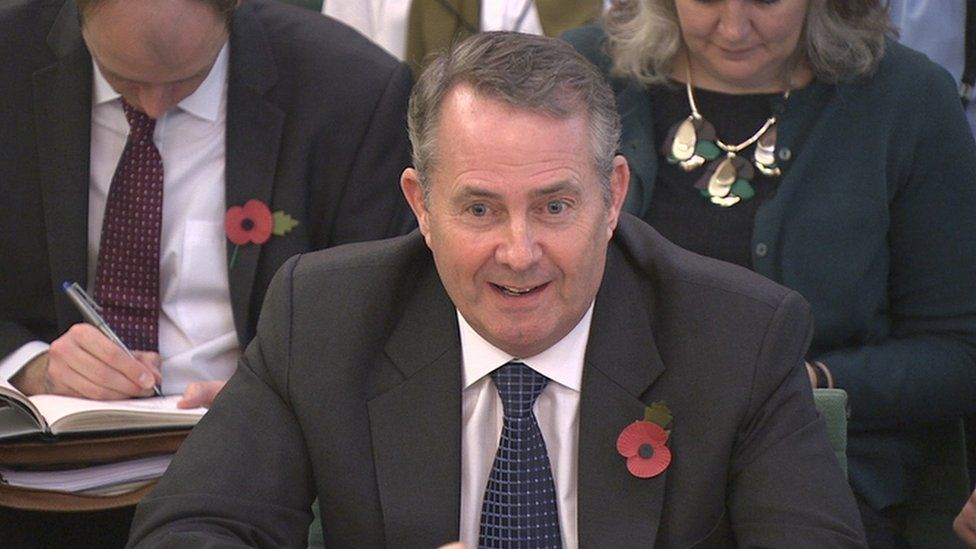 Liam Fox addressing MPs