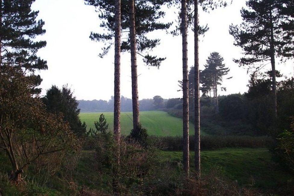 Alleged site of UFO landing in Rendlesham Forest in Suffolk