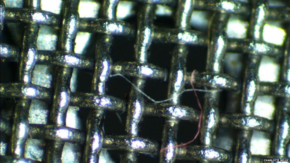 Fabric fibre caught in a filter