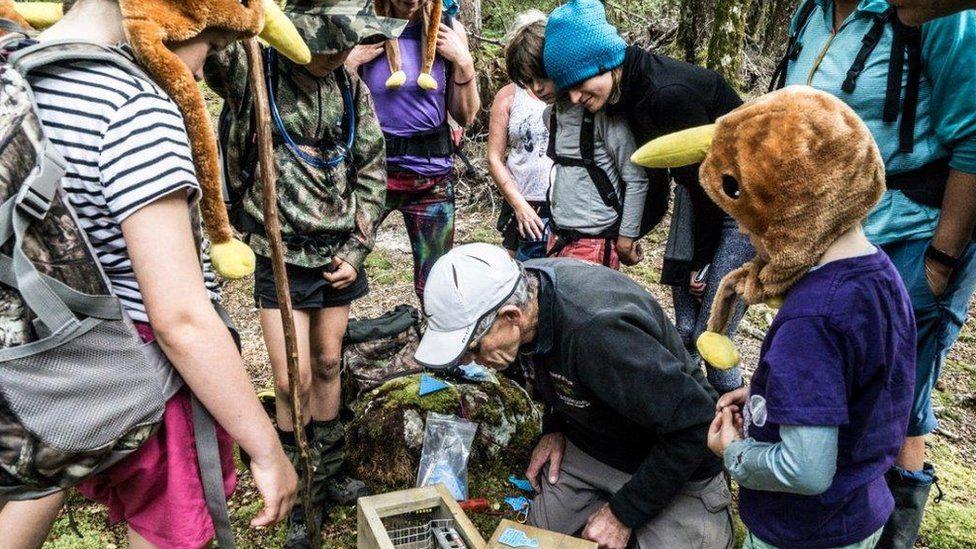 Conservationists set a predator trap