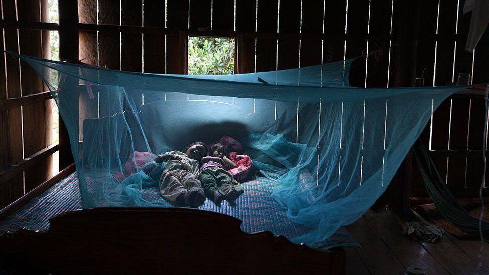 Sleeping under a bed net