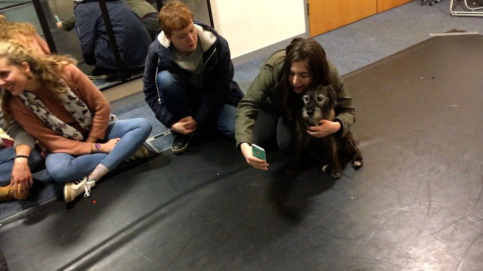 A student taking a selfie with one of the dogs