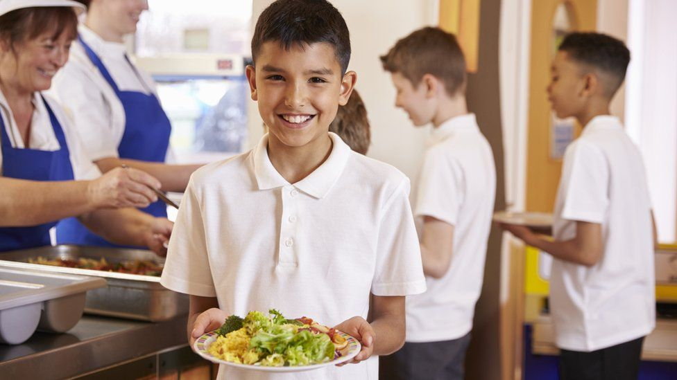 Boy with healthy school meal