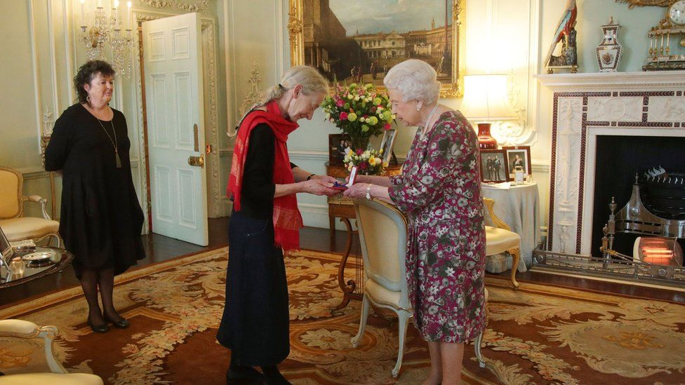 A picture of the Queen presenting poet Gillian Allnutt with a medal at Buckingham Palace shows an electric fire