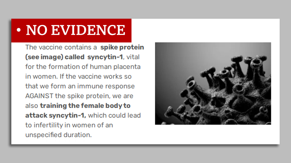 """a screenshot reading """"the vaccine contains a spike protein called syncytin-1, vital for the formation of human placenta in women. If the vaccine works so that we form an immune response against the spike protein, we are also training the female body to attack syncytin-1, which could lead to infertility in women of an unspecified duration"""" - labelled no evidence by Reality Check"""