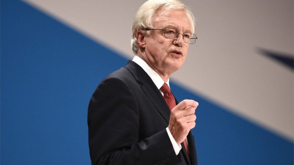 Secretary of State for Exiting the European Union (Brexit Minister) David Davis