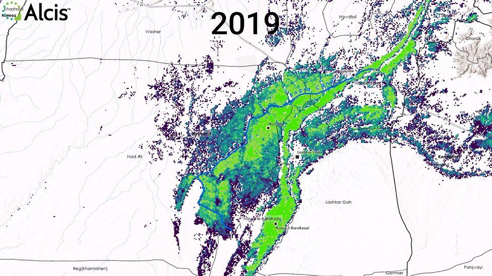 Farms in 2019