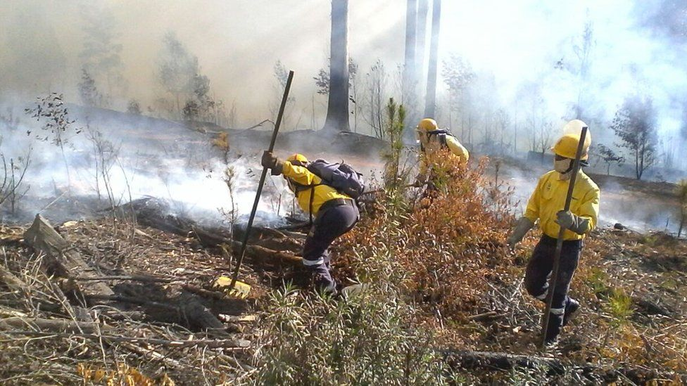 Firefighters putting out fires