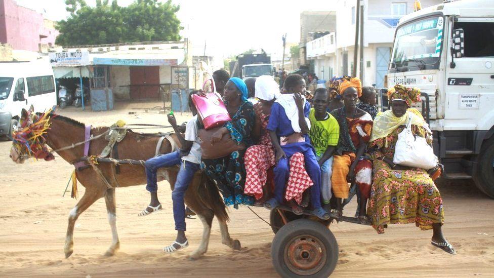 A donkey cart