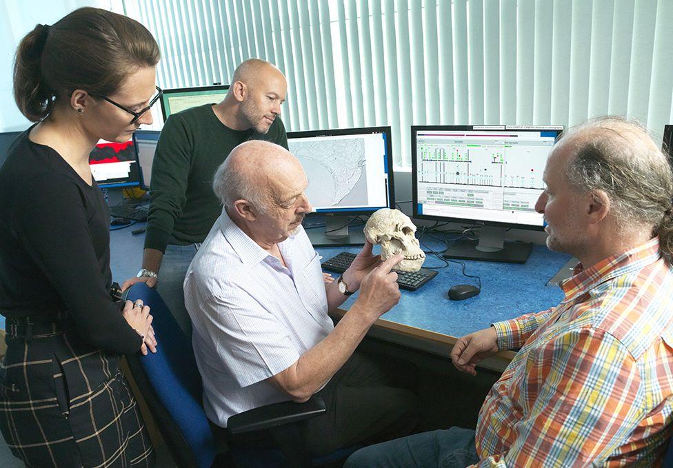 Team discusses skull