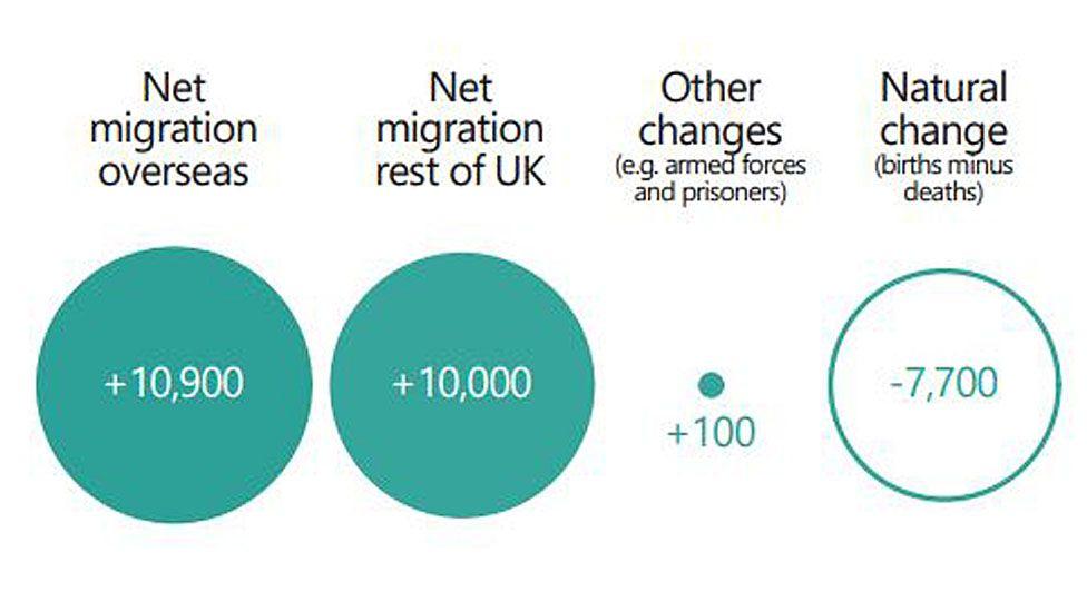 Net migration infographic