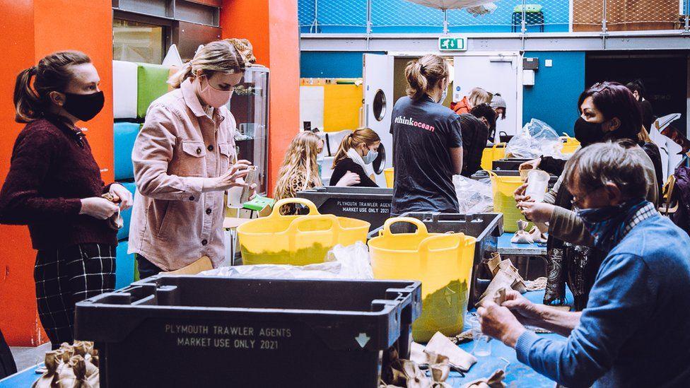 Volunteers bagging seagrass seeds